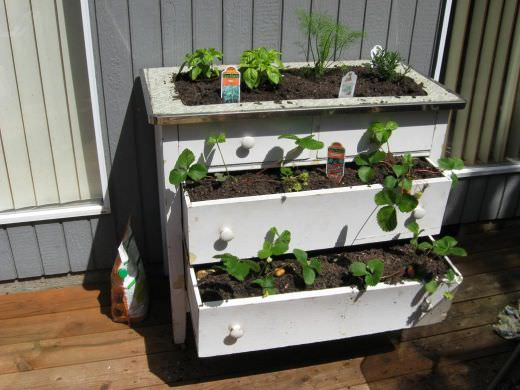 8 One-of-a-Kind Raised Garden Beds - Discarded dressers, Australian Outdoor Living.