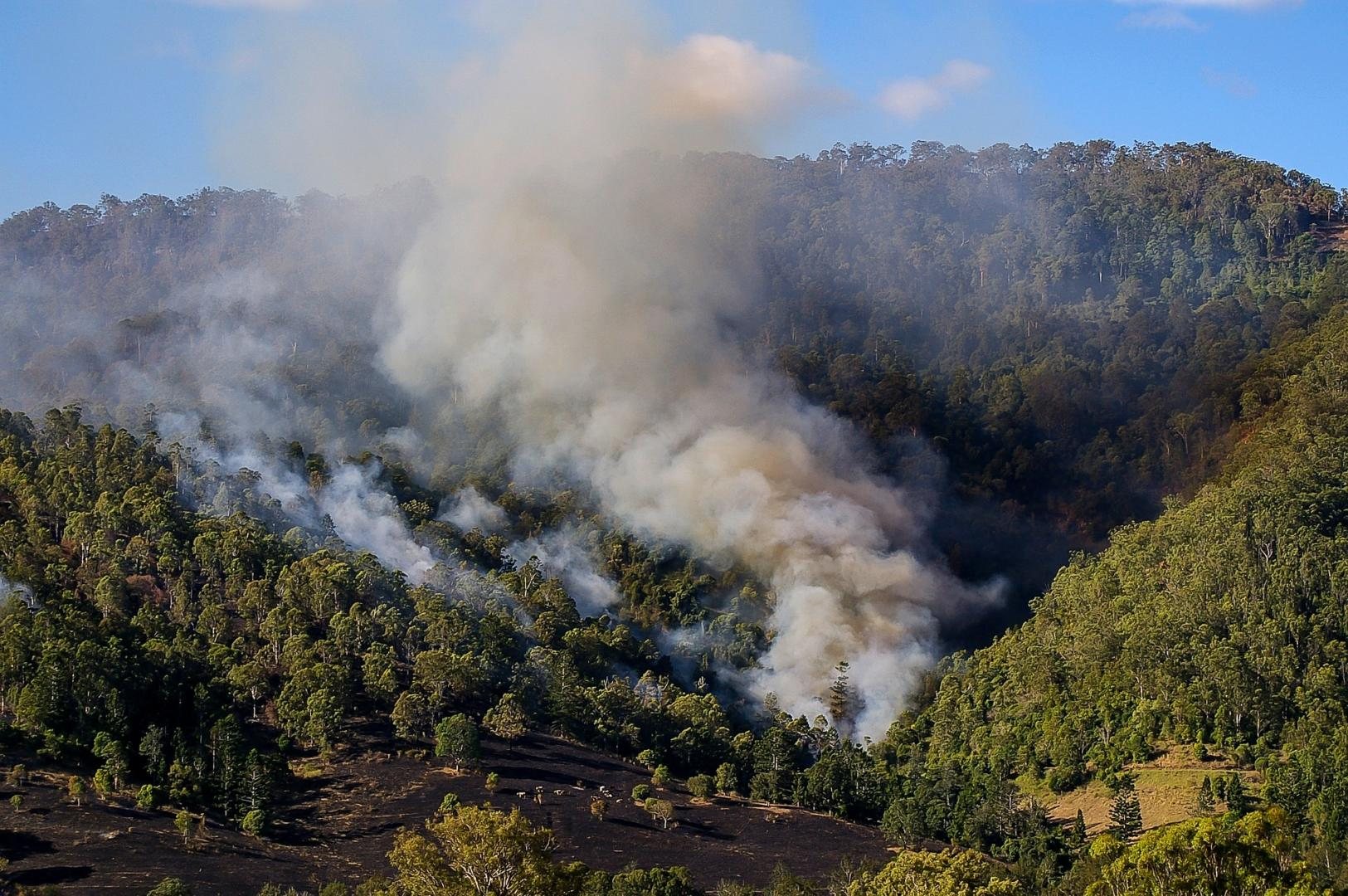 How to prepare for bushfire season - Bushfires can more quickly. Be prepared, Australian Outdoor Living.