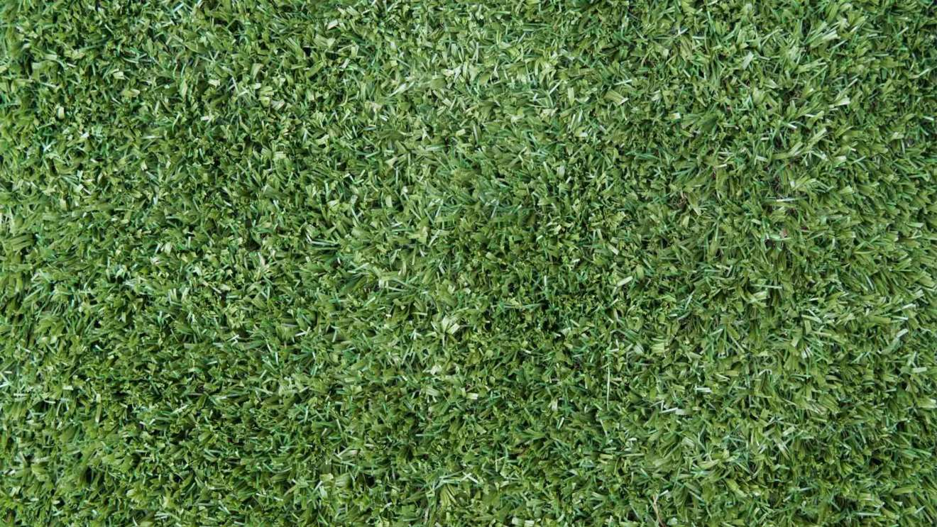 Artificial grass: which is the best lawn for you - The Savannah Broad Leaf Range, Australian Outdoor Living.